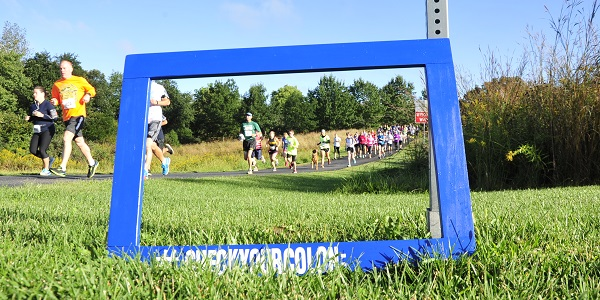 Framed Runners